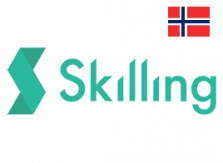Skilling med norsk flagg